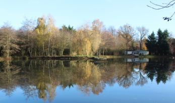 small exclusive carp fishing lake in France