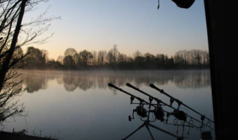 Carp fishing winter session