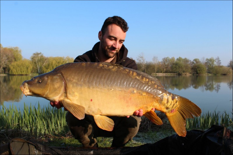 French carp at Seigneurie lake