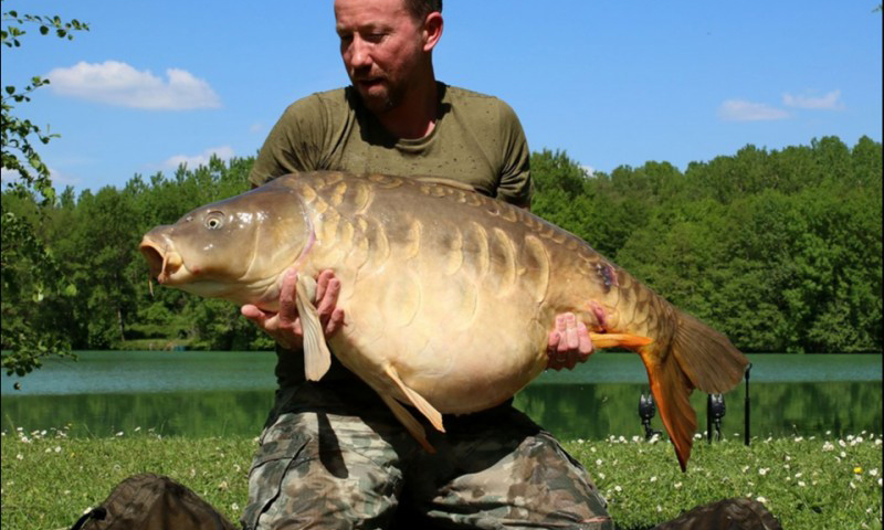 Sandhurst Carp Pictures [Archive] - THE ANGLERS FORUM | FISHING FORUMS