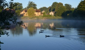 Golden Oak - fishing in France with accommodation